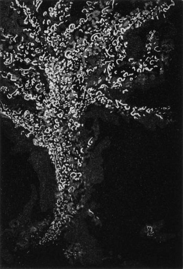 Frank Boyden, Interstices, A Conversation with Alders 4 line etching/aquatint/sugarlift