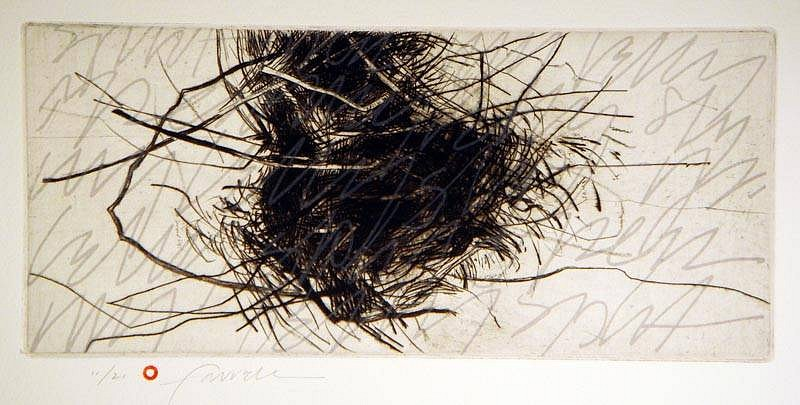 Mary Farrell, Scatology 2010, drypoint, lithograph