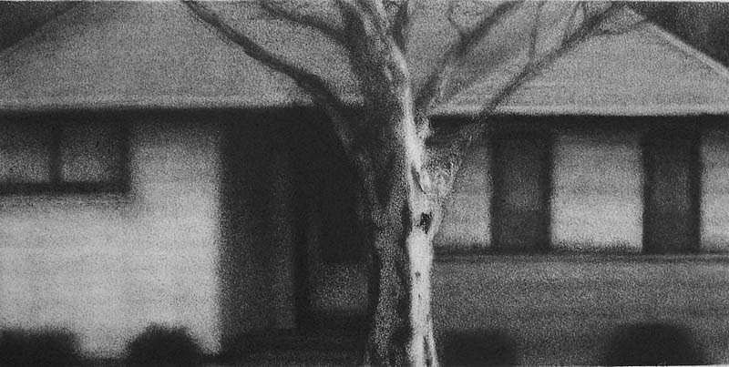 Elaine Green, House #20 2007, charcoal
