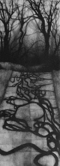 Elaine Green, Road Patch 2009, charcoal on paper